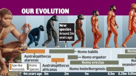 Our current understanding of evolution