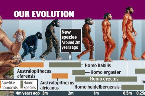 Our current understanding of evolution